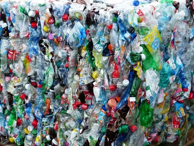 Plastic-Eating Bacteria Could Be The Future Of Recycling