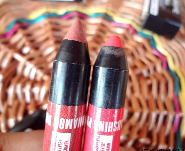 Lakme Enrich Lip Crayons Cinnamon Brown (09) & Blushing Pink (10) | Review & Swatches