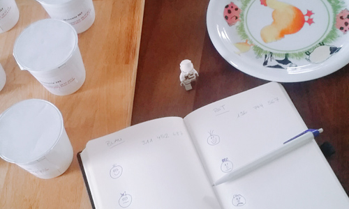 yoghurttest_startprep2_WIDE