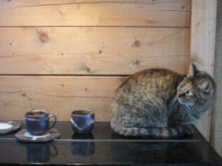 姫子とカップ & ソーサー