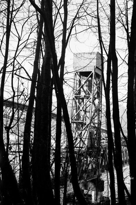 16-12-eastvan-35mm-treehouse-bridge