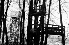16-12-eastvan-35mm-treehouse
