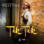tik tok lyrics by will paul