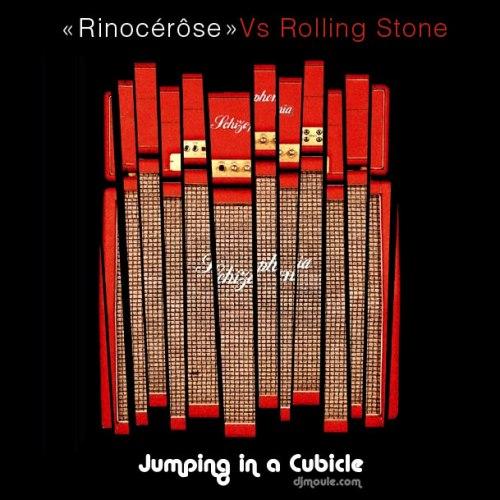 Rinôçérose vs. Rolling Stone - Jumping In A Cubicle - DJ Moule Bootleg