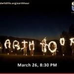 Sambutan Earth hour 26 march 2011, pukul 8:30 malam, macam ne?