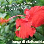 Bunga raya, ciri-ciri dan simbolik.