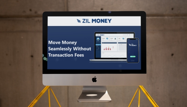 Electronic Checks Zilmoney