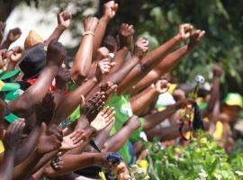 Chiefs now Mugabe's auxiliaries