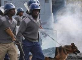 Zimbabwe police deny using bullets in anti-Mugabe protests