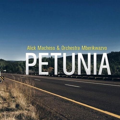 alick macheso petunia