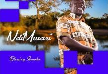 blessing shumba ndimwari album