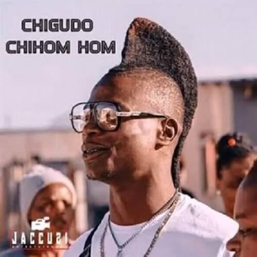 chigudo gudo chihomu homu album