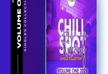 chillspot records singles collection vol 1 chillspot records