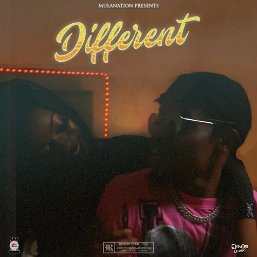 scripmula different ft poptain nutty o