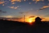 Sunrise, Te Kauwhata, Waikato, NZ. Image: Su Leslie, 2017