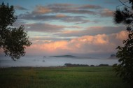 Morning mist, Te Kauwhata, Waikato, NZ. Image: Su Leslie, 2017