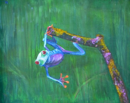 clinging frog