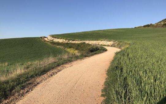 Camino Puente and Najera