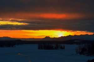 Alaska Dying Light