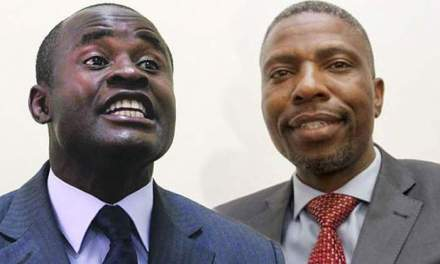 Nduna must have abducted Dzamara:Mliswa