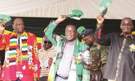 ED to appoint Harare Minister this week