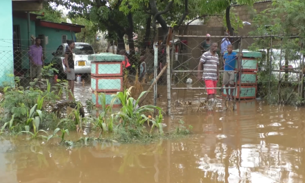 Flash floods destroy properties in Chiredzi
