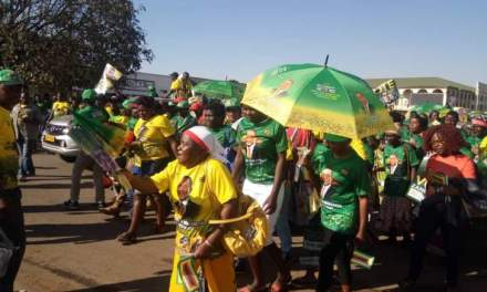 Mnangagwa shelves Zanu-PF solidarity march again
