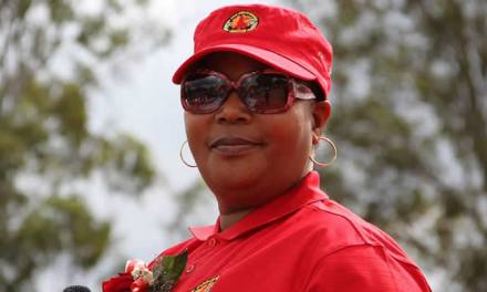 Khupe party struggles to shake off Zanu-PF tag