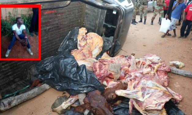 Cattle rustler crashes in cop high speed chase, three carcasses found