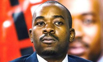 Chamisa cries as his political career ends
