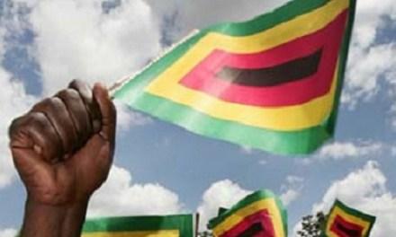 Zanu-PF wins by-elections