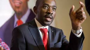Chamisa chides MDC-A youths against macho politics