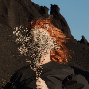 Goldfrapp Silver Eye album cover