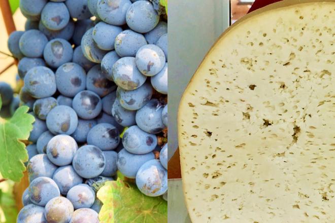 essen und trinken in Georgie - Wein und Käse - georgischer Wein - georgischer Käse - Saperavi - Qvevri - georgische Spezialitäten - Info - Georgien kulinarisch - Sulguni - Khachapuri - Käse - Wein - Käsesorten