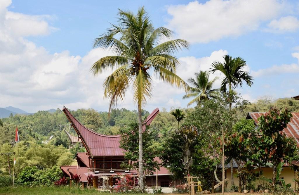 Landschaft mit traditionellen Toraja Gebäuden in Sulawesi - Indonesien