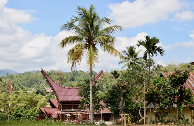 Landschaft mit traditionellen Toraja Gebäuden in Sulawesi - Indonesien