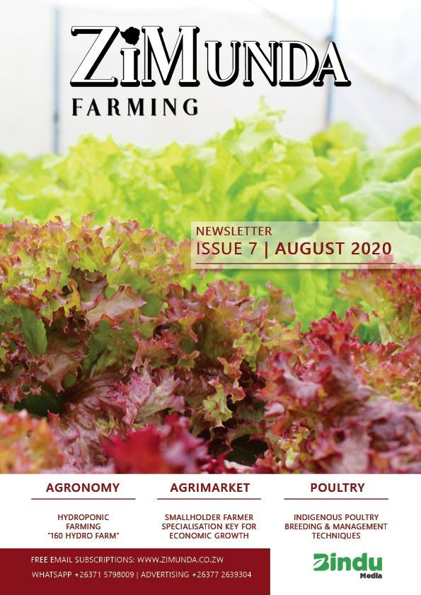 ZiMunda Farming Newsletter Issue 7 Cover