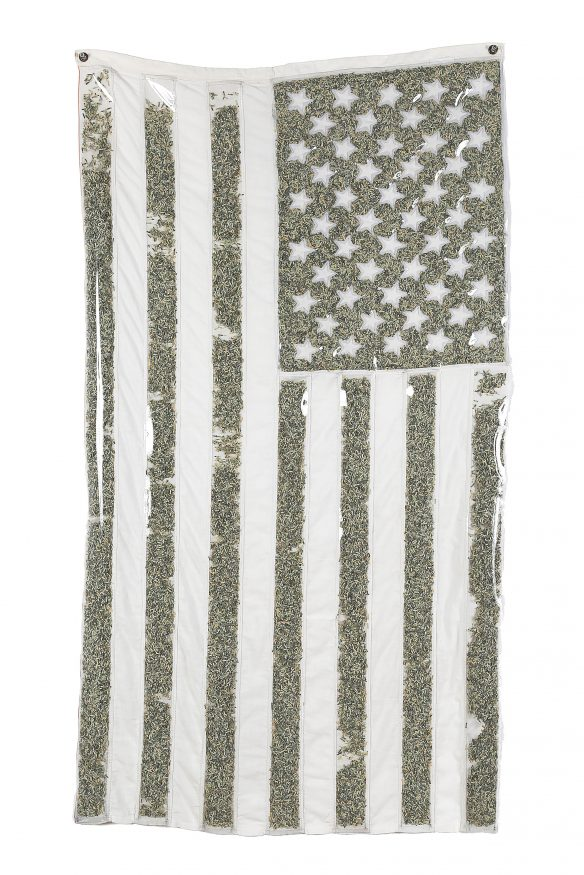 Holly Ballard Martz Old Glory White Washed and Monetized US Flag