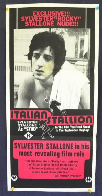 itallion stallion daybill 13 2 14