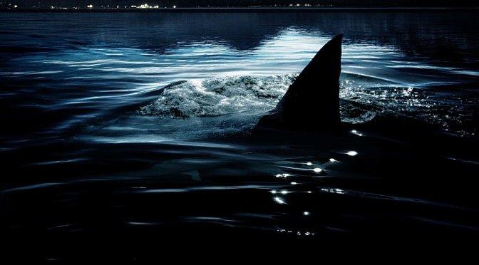 Mandíbulas letales (2015), tiburones en el lago