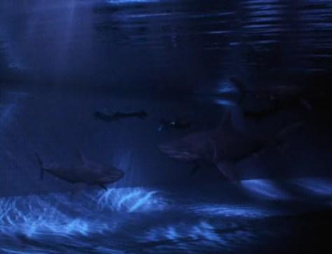 Muerte en las profundidades 02