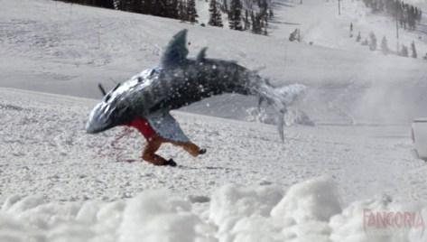 Avalanche sharks 04