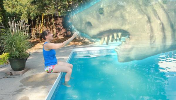 Ouija Shark 03