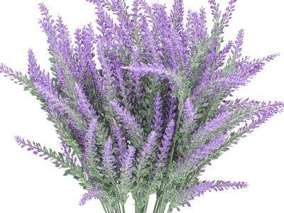 Aroomiõli Lavendel 20 ml- 100 ml
