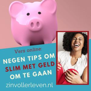 slim met geld zinvollerleven.nl