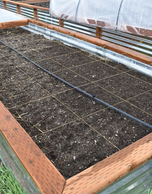 3 Simple Steps To A Perfectly Organized Raised Bed Square-Foot Garden Box