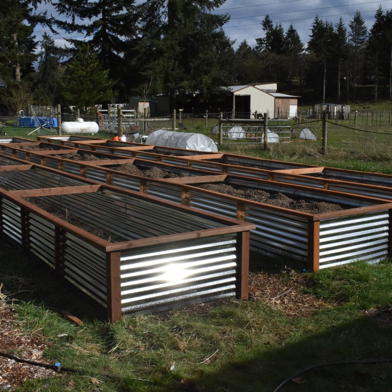 How To Build Your Own Raised Bed Garden Boxes