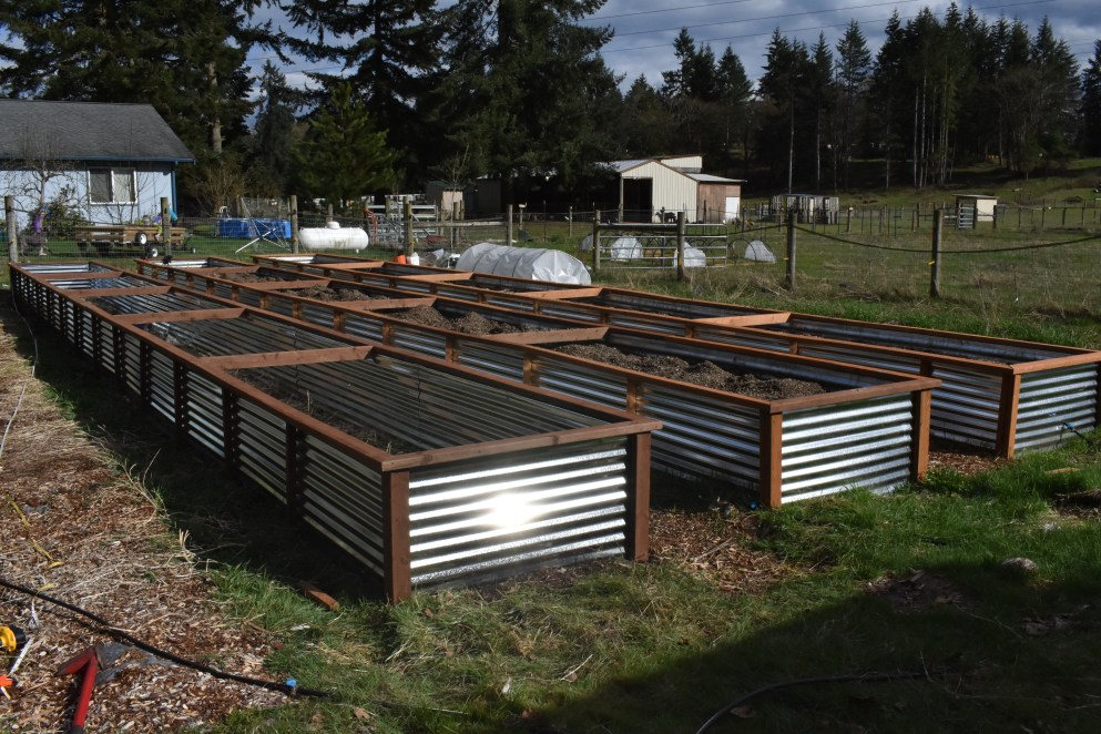 Our 3 Fifty-Foot Raised Garden Bed Boxes