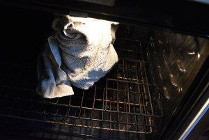 Goat Milk Yogurt in the oven
