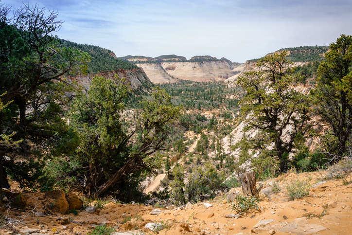 East Canyon Trail
